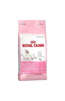 Alimento gato cachorro Royal Babycat